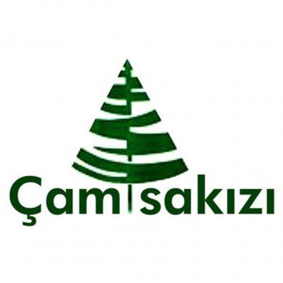 Camsakizi